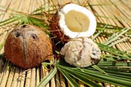 Kokosolie gebruiken is een aanrader en dit is waarom - Viv Online