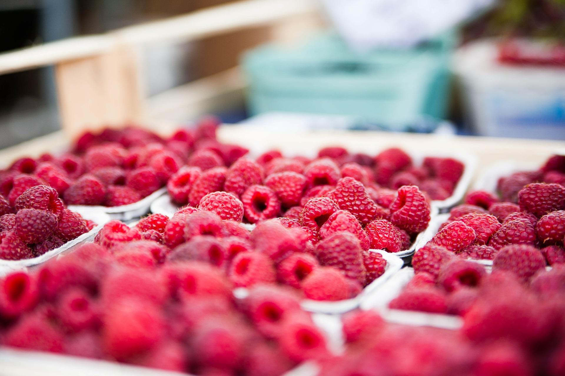 Wat Is Het Verschil Tussen Fruitsuiker En Gewone Suiker